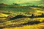 Affiche d'un paysage Toscan
