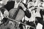 Photographie noir & blanc d'un violoncelliste