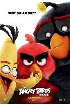 Affiche du film Angry Birds