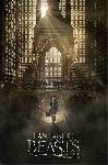 Poster du film Les Animaux fantastiques