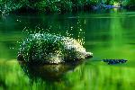 Rocher de granit dans l'eau de l'Agout dans le Sidobre