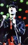 Poster photo Freddie Mercury