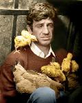 Poster photo de jean-Paul Belmondo