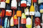 Poster photo Lobster pots - bouées de casiers