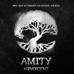 Photo du film Divergente Amity
