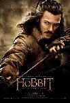 Affiche du film Le Hobbit La Désolation de Smaug