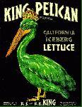 Affiche publicité vintage King Pelican California Lettuce