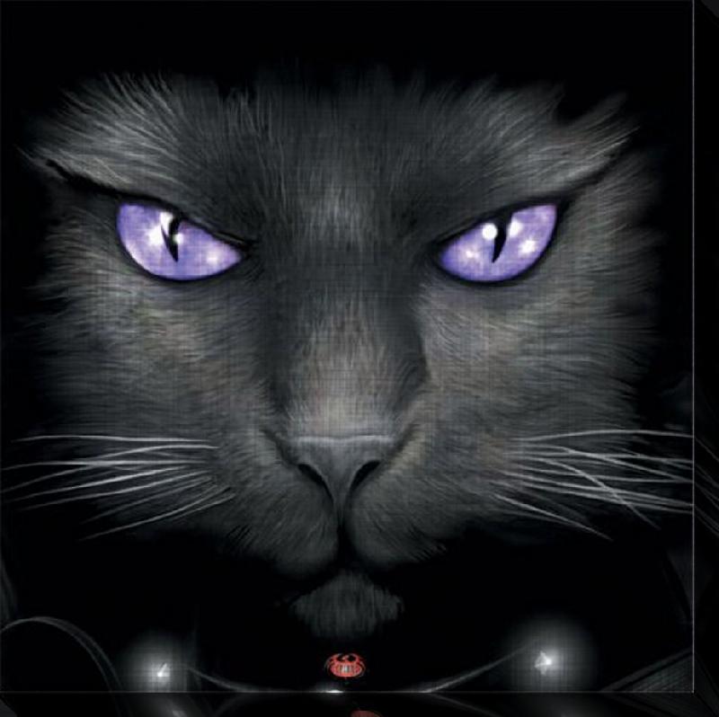 affiches posters toile imprim e yeux de chat. Black Bedroom Furniture Sets. Home Design Ideas