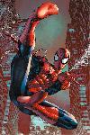 Affiche de Spider-Man (Web Sling)
