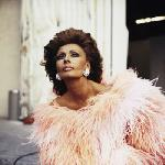 Photo de l'actrice Sophia Loren
