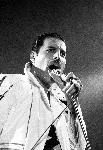 Photo de Freddie Mercury