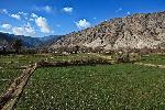 Photo rizière dans la montagne d'Afghanistan