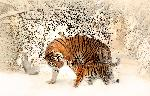 Photo tigre et bébé tigre dans la neige