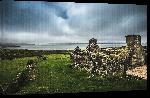 Toiles imprimées Poster photo Irlande paysage