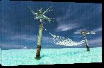 Toiles imprimées Photo d'un hamac sur lagon