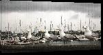 Toiles imprimées Oiseau devant un port Irlandais