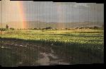 Toiles imprimées Photo arc en ciel sur rizière en Afghanistan