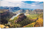 Toiles imprimées Photo paysage foret en Afrique du Sud