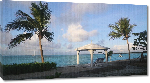 Toiles imprimées Photo palmier plage Bahamas