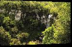 Toiles imprimées Photo d'une cascade dans les bois en argentine