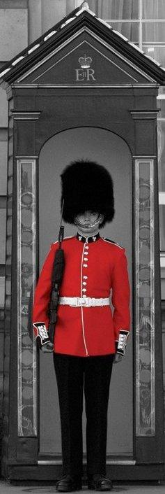 Affiche Dun Garde Anglais Du Buckingham Palace Acheter