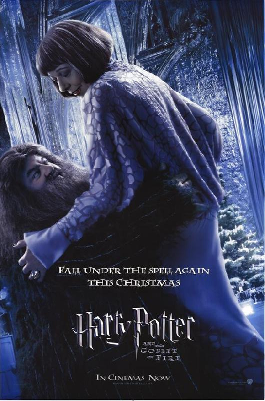 Affiche du film harry potter et la coupe de feu acheter affiche du film harry potter et la - Harry potter la coupe de feu film ...