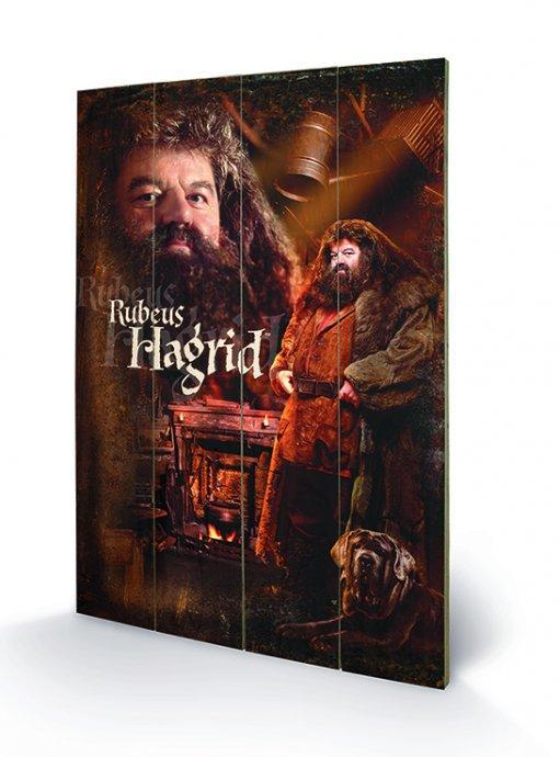 affiches posters impression sur bois du film harry potter. Black Bedroom Furniture Sets. Home Design Ideas